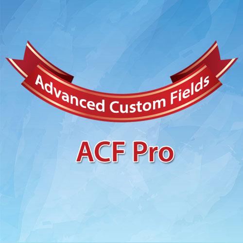 WordPress ACF高级版