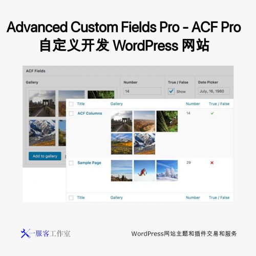 Advanced Custom Fields Pro - ACF Pro 自定义开发 WordPress 网站