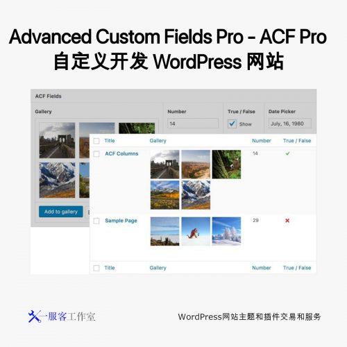 Advanced Custom Fields Pro - ACF Pro 自定义开发 WordPress 网站