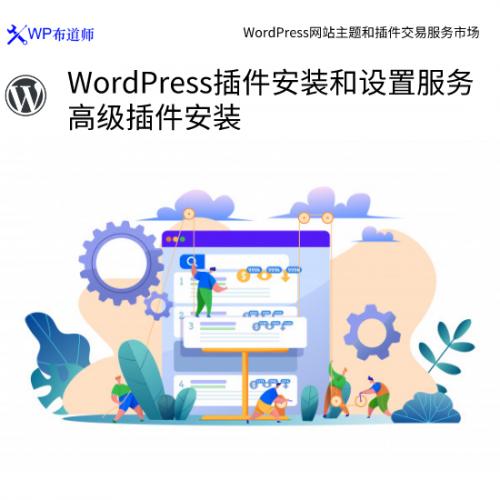 WordPress插件安装和设置服务 高级插件安装