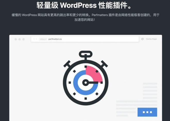 Perfmatters   轻量级 WordPress 优化插件